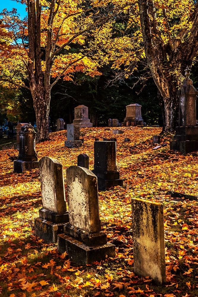 Autumn's Peace