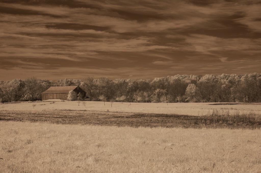 Infrared Barn