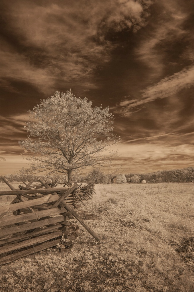 Gettysburg NMP - Fence in Infrared