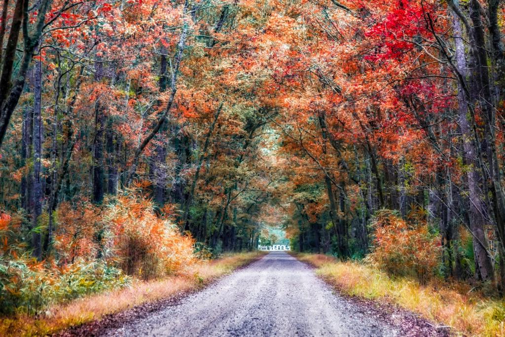 To Autumn  2717