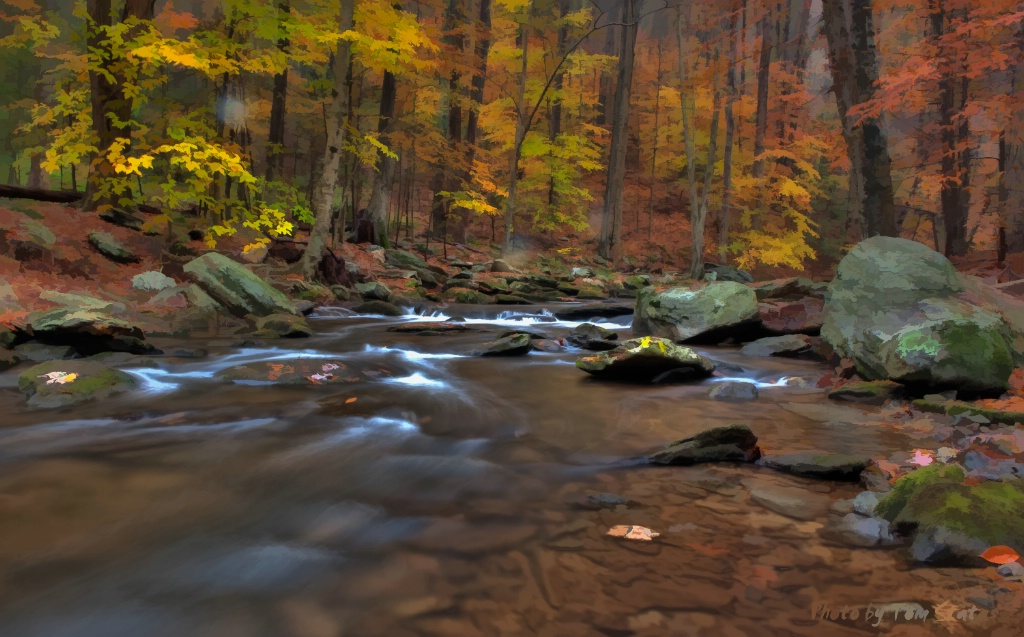 Fall Catoctin Stream