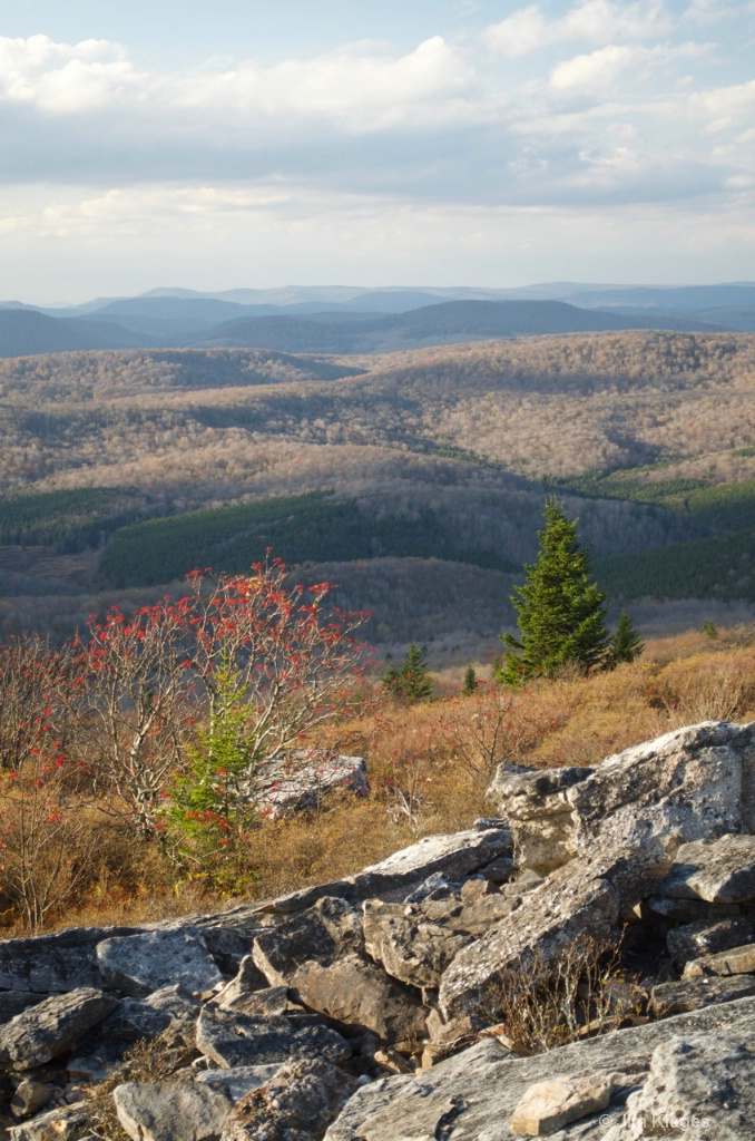 NW View From Spruce Knob