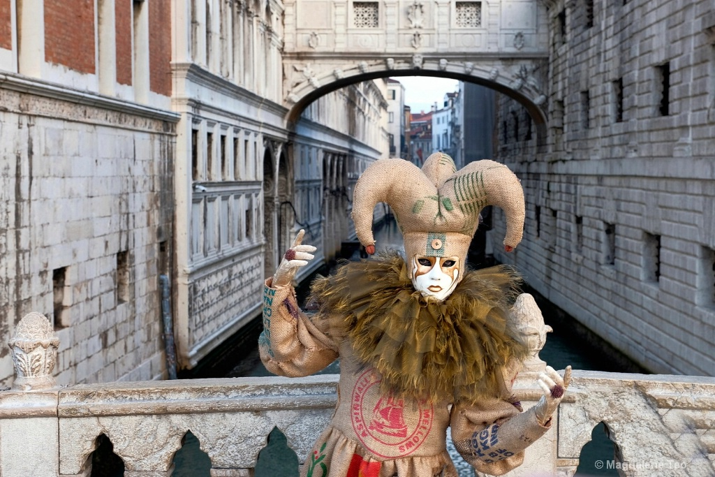 Venice Carnival: Color Series - Brown Sighs