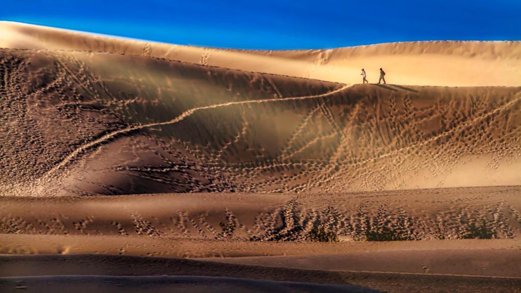 Dune Days  4391