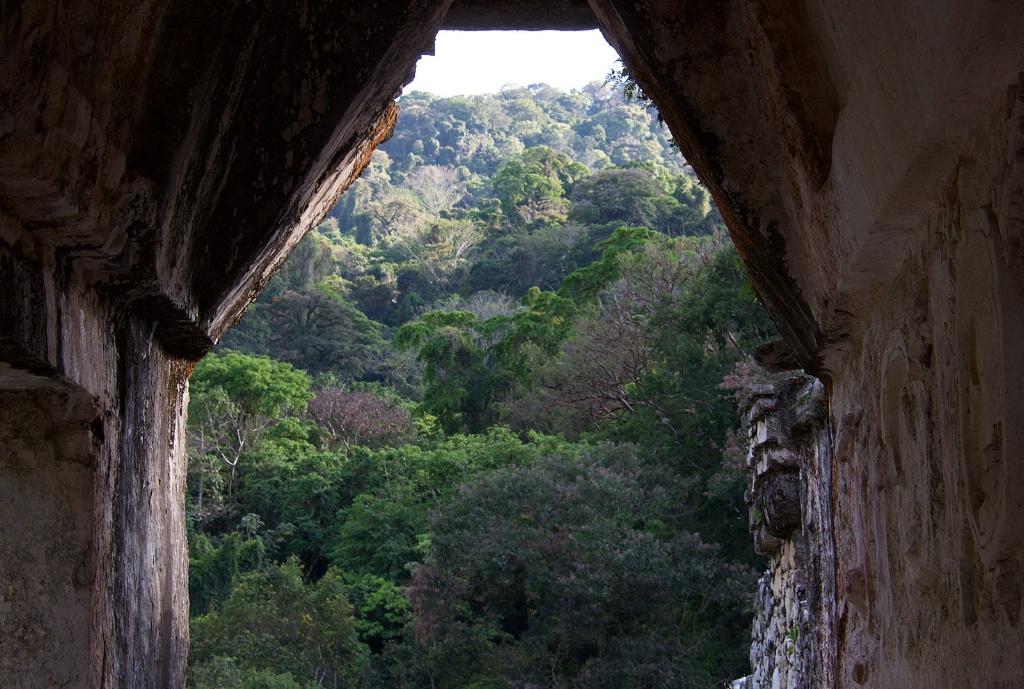 Palenque Chiapas  10