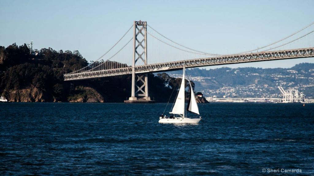 A good sailing day!