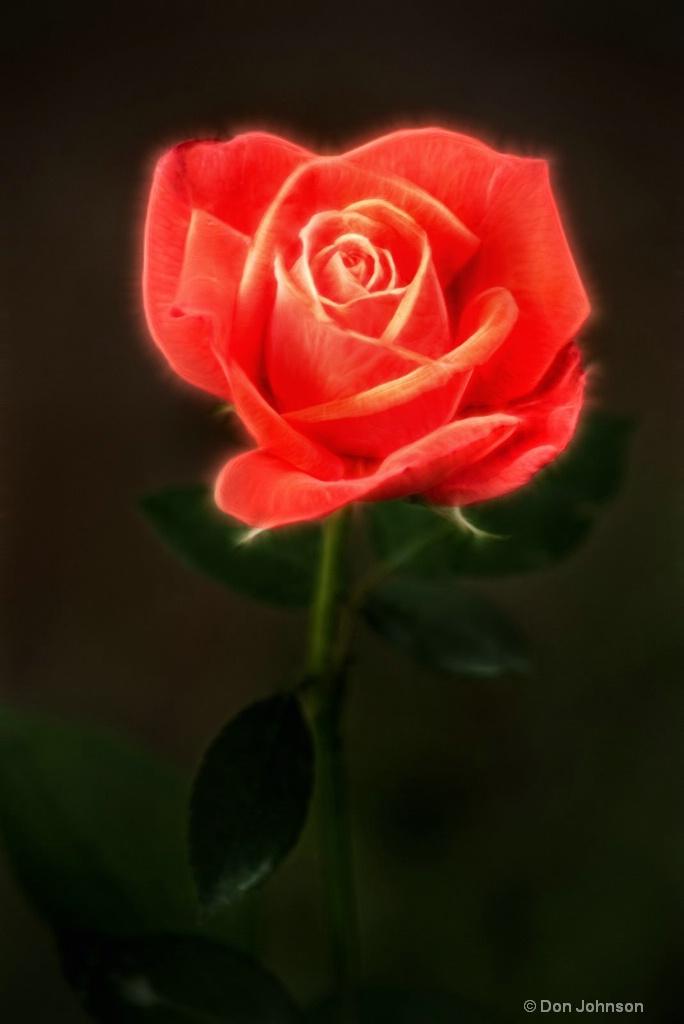 Artistic BSG Rose 6-0 F LR 6-10-18 J255