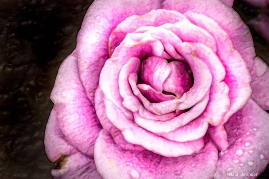 Artistic Purple Rose-BSG 6-0 F LR 6-10-18 J155