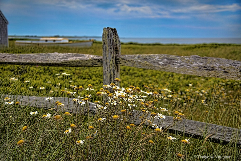 Smiths Point Fence