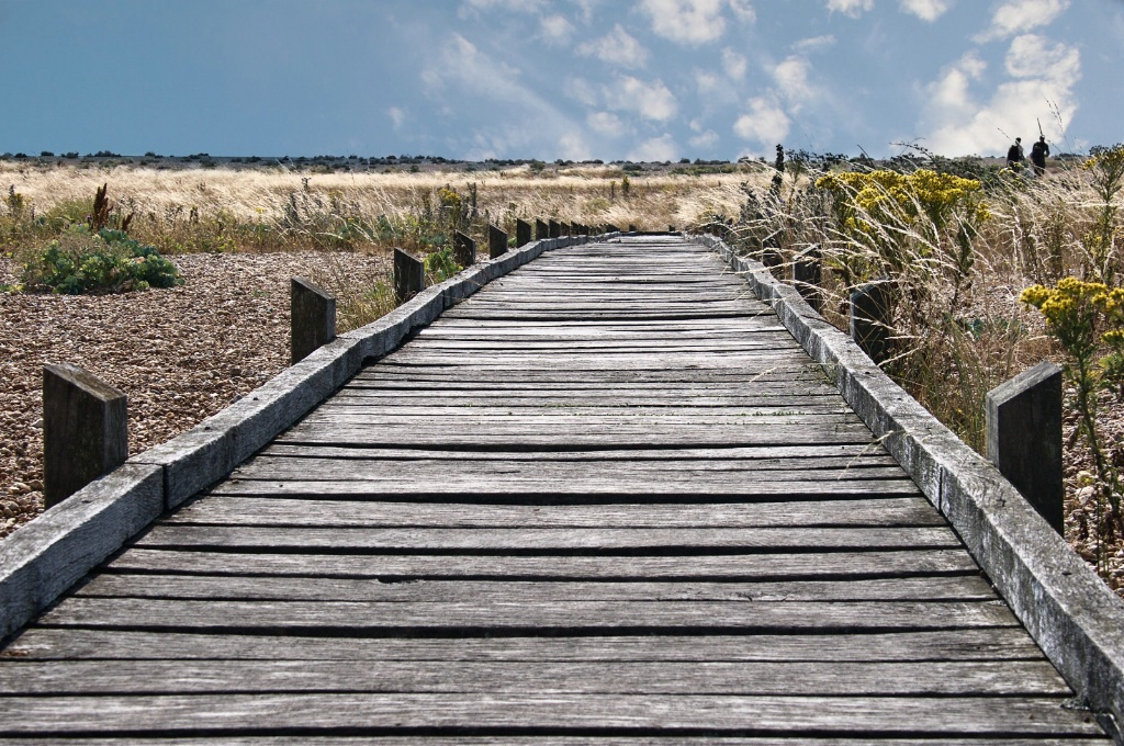 Dungeness Path