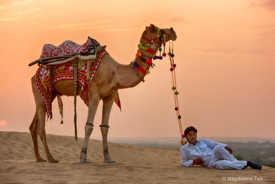 Flashback to Rajasthan India - Bedouin II