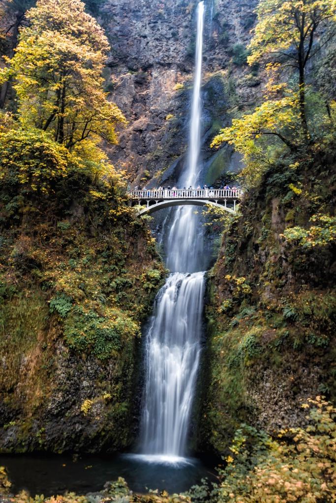 Multnomah Falls  2307