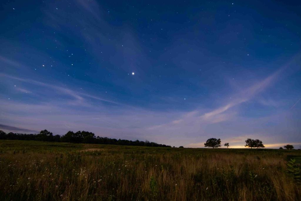 Big Meadow by Night