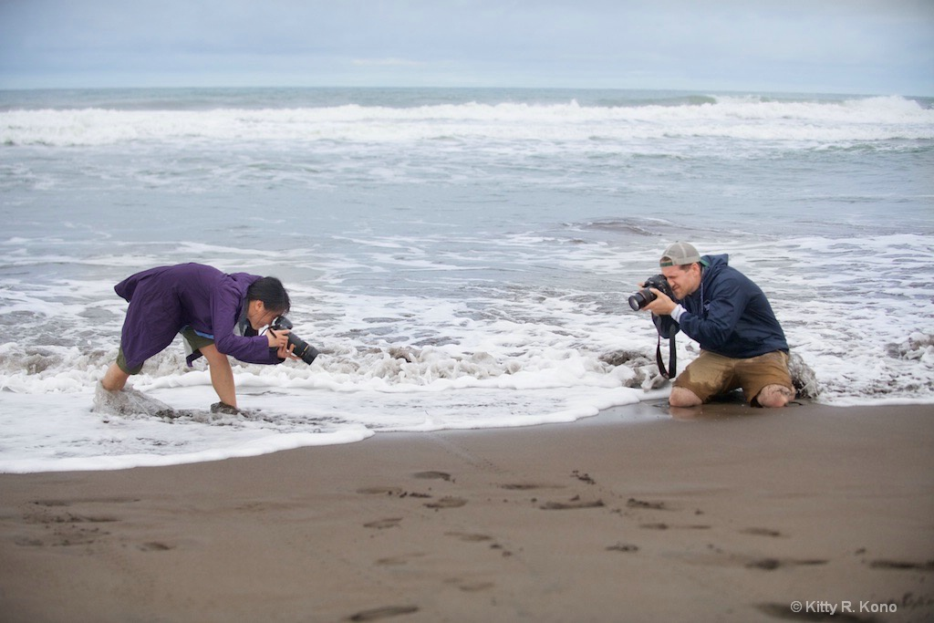 Yumiko and Scott Photographing a little Turtle
