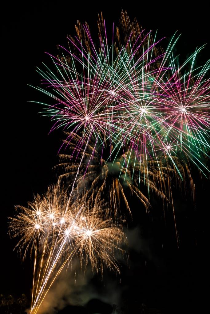 Fireworks Friday  4646