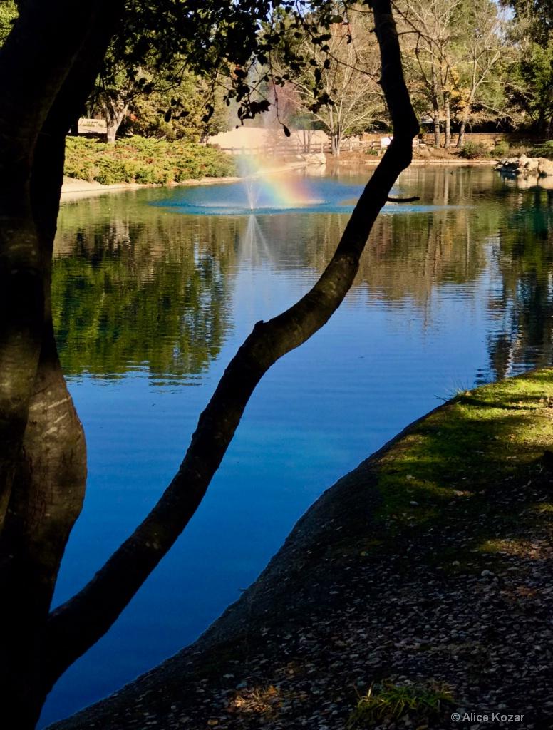 "Rainbow through the ""window"""
