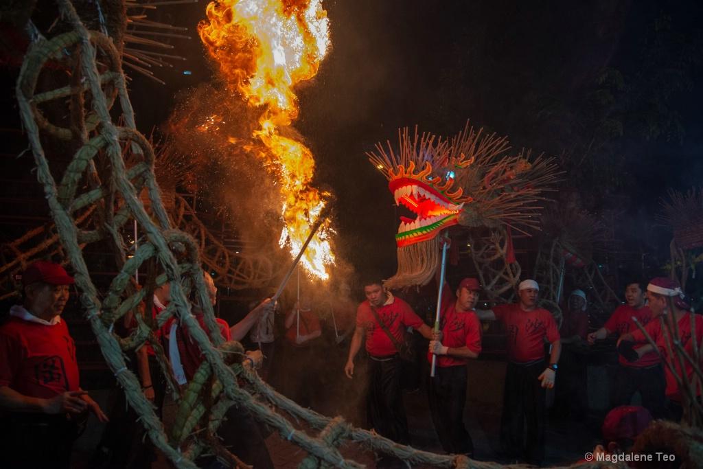 Fire Dragon Series - Team Effort