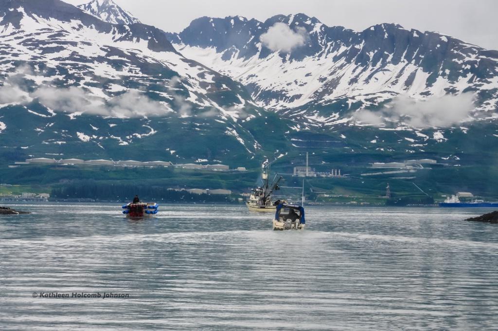 Fishing Prince William Sound!