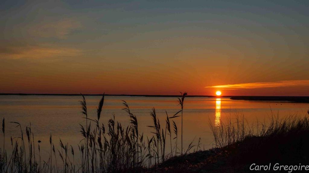 Sunrise over Delaware Bay