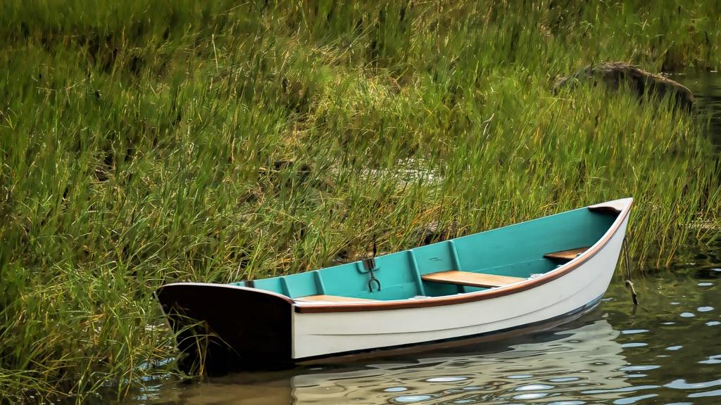 The Row Boat