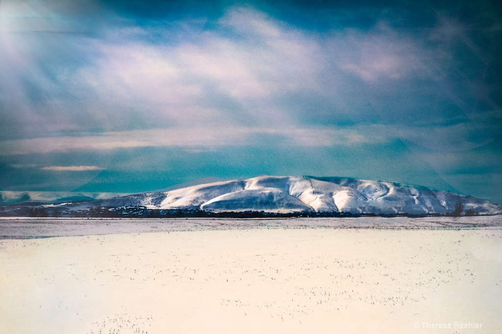 Nature & Landscape - Bright Snowy Day