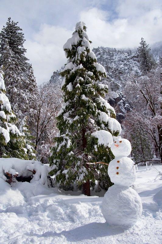 Snowman's Backyard