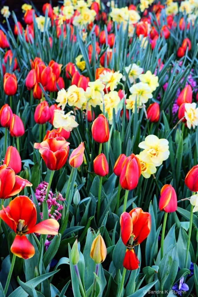 Spring Display Redo