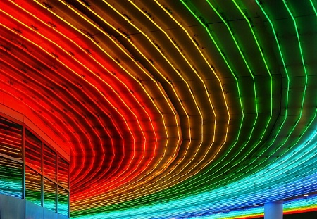 Photography Contest Grand Prize Winner - November 2002: Under The Neon Lights