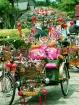 Pretty Pedicab