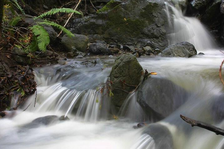 Sylvestri Creek Falls