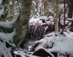 Waterfall & T...