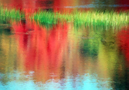 Reflecting On Acadia 1-3