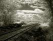Tracks, Brownsmea...