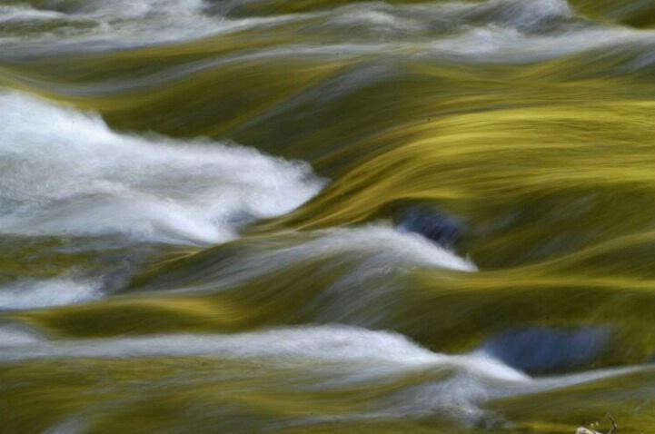 Green River Peace - ID: 131932 © Sandy Conley