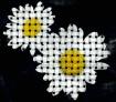 Weaving Daisies
