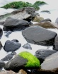 Surf and Stones
