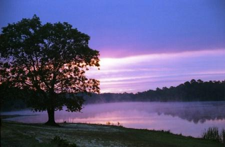 Dawn of October