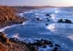 Sonoma Coast Suns...