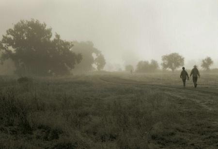 A Foggy Morning Walk