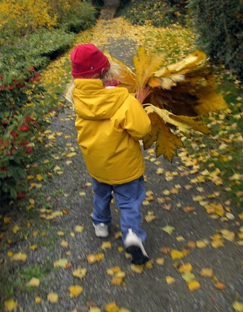 Carrying leaves for daddy