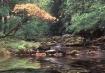 Mountain stream i...