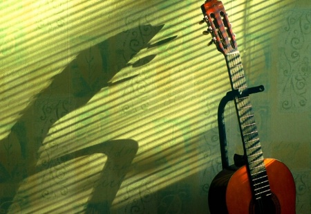 Guitar in Afternoon Sun