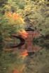 Ashville bridge (...