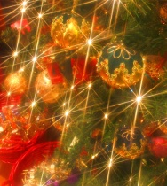 December 2019 Photo Contest 2nd Place Prize Winner