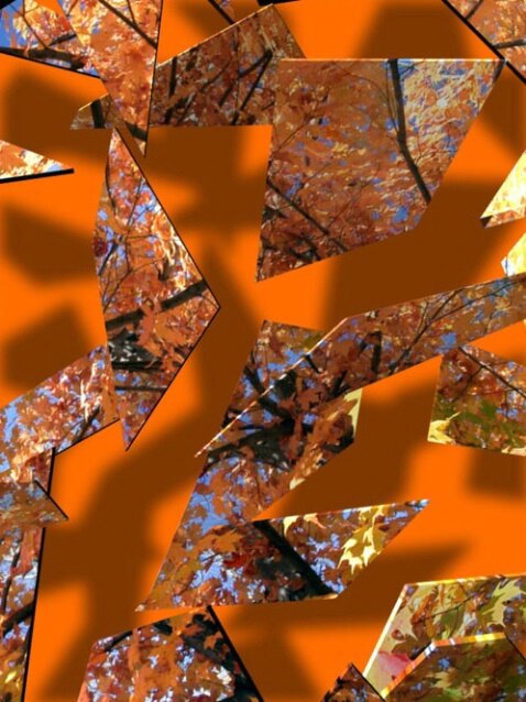 Shattered Autumn - ID: 277222 © Paul Coco