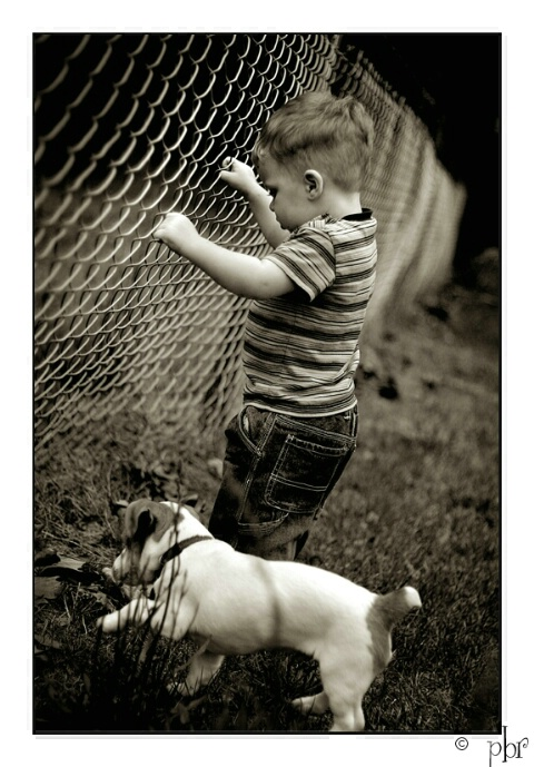 About a boy and his dog