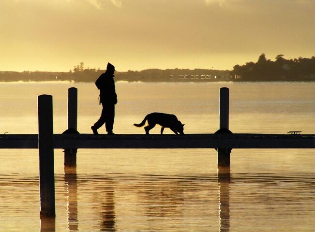 + Early Morning Walk +