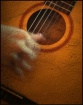 Guitar and Hands