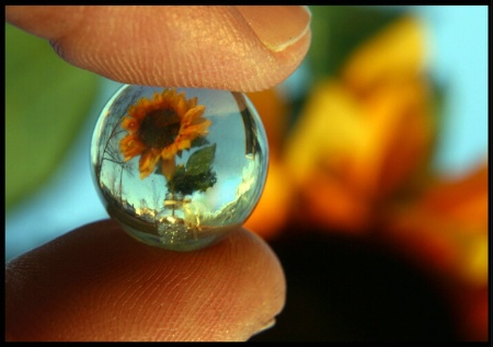 Tiny worlds and microcosms