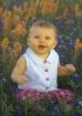 Bluebonnet Baby